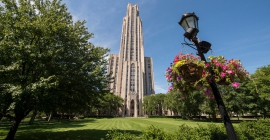 pitt's cathedral